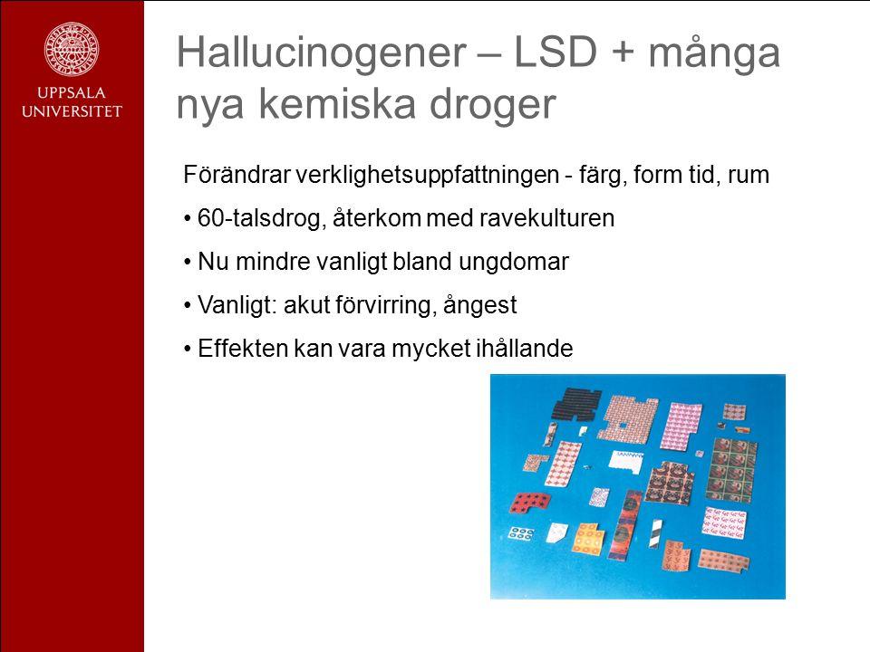 Hallucinogener – LSD + många nya kemiska droger Förändrar verklighetsuppfattningen - färg, form tid, rum 60-talsdrog, återkom med ravekulturen Nu mindre vanligt bland ungdomar Vanligt: akut förvirring, ångest Effekten kan vara mycket ihållande