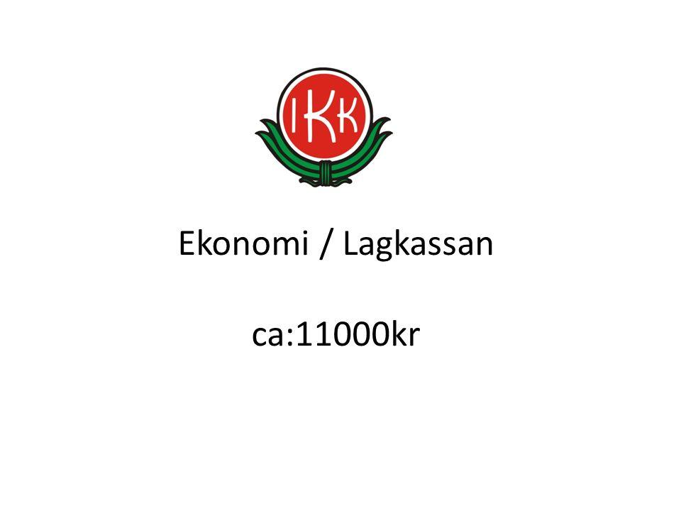 Ekonomi / Lagkassan ca:11000kr