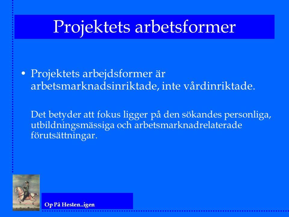 Op På Hesten..igen Projektets arbetsformer Projektets arbejdsformer är arbetsmarknadsinriktade, inte vårdinriktade. Det betyder att fokus ligger på de