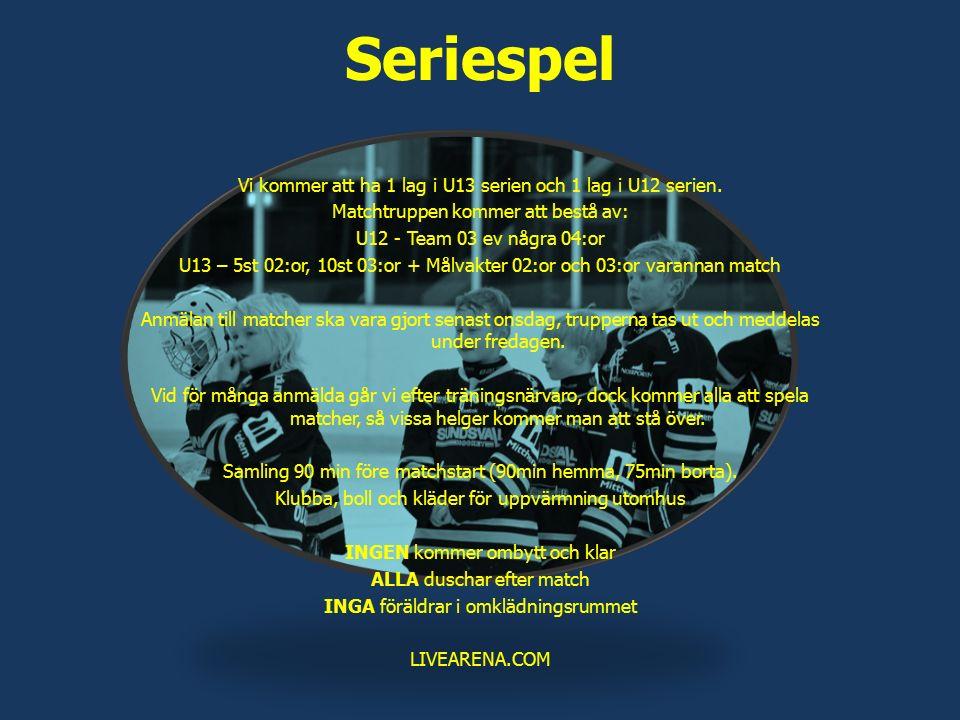 Seriespel Vi kommer att ha 1 lag i U13 serien och 1 lag i U12 serien. Matchtruppen kommer att bestå av: U12 - Team 03 ev några 04:or U13 – 5st 02:or,