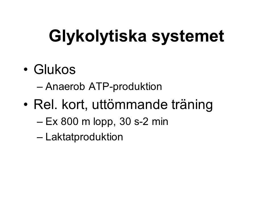 Glykolytiska systemet Glukos –Anaerob ATP-produktion Rel.