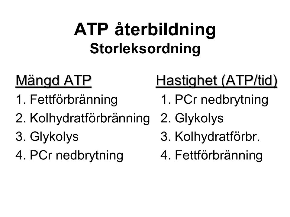 ATP återbildning Storleksordning Mängd ATPHastighet (ATP/tid) Mängd ATP Hastighet (ATP/tid) 1.