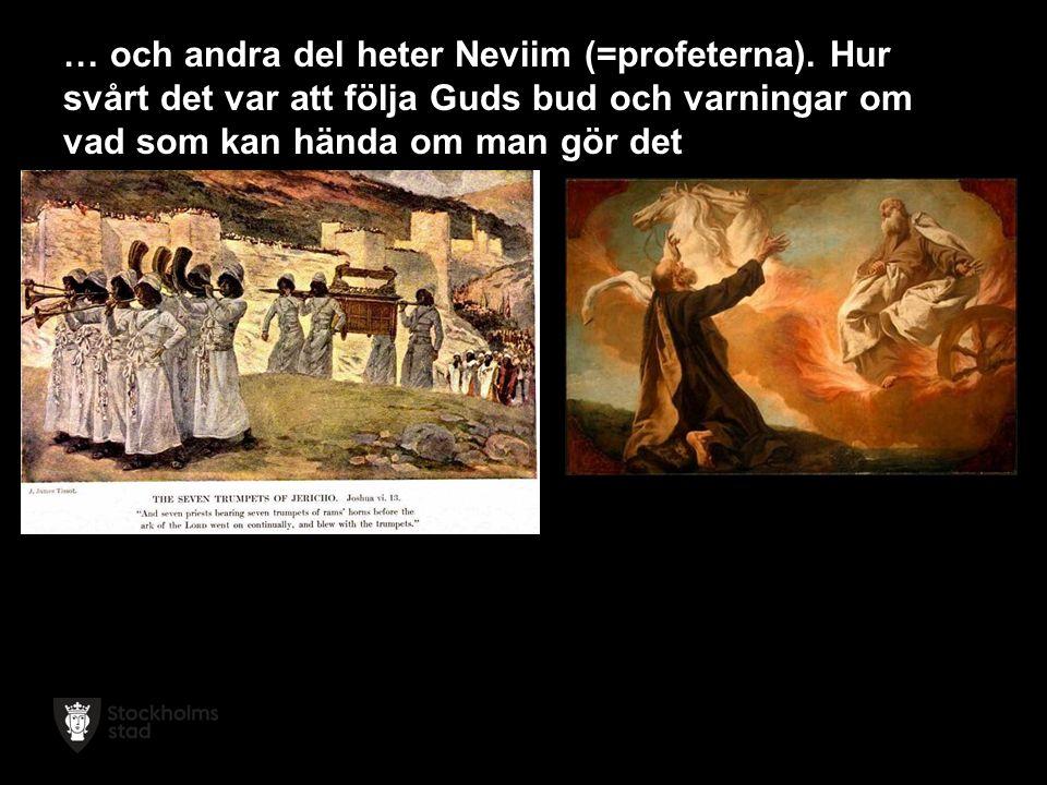 … och andra del heter Neviim (=profeterna).