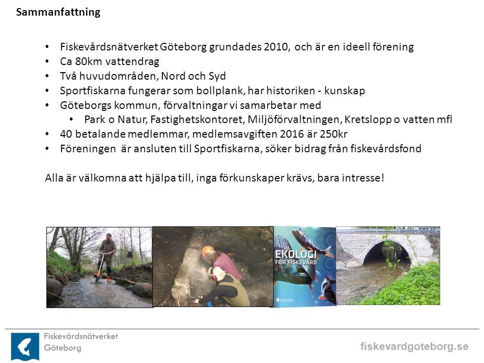 fiskevardgoteborg.se Sammanfattning Fiskevårdsnätverket Göteborg grundades 2010, och är en ideell förening Ca 80km vattendrag Två huvudområden, Nord och Syd Sportfiskarna fungerar som bollplank, har historiken - kunskap Göteborgs kommun, förvaltningar vi samarbetar med Park o Natur, Fastighetskontoret, Miljöförvaltningen, Kretslopp o vatten mfl 40 betalande medlemmar, medlemsavgiften 2016 är 250kr Föreningen är ansluten till Sportfiskarna, söker bidrag från fiskevårdsfond Alla är välkomna att hjälpa till, inga förkunskaper krävs, bara intresse!
