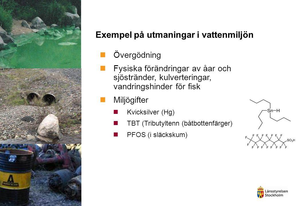 Exempel på utmaningar i vattenmiljön Övergödning Fysiska förändringar av åar och sjöstränder, kulverteringar, vandringshinder för fisk Miljögifter Kvicksilver (Hg) TBT (Tributyltenn (båtbottenfärger) PFOS (i släckskum)