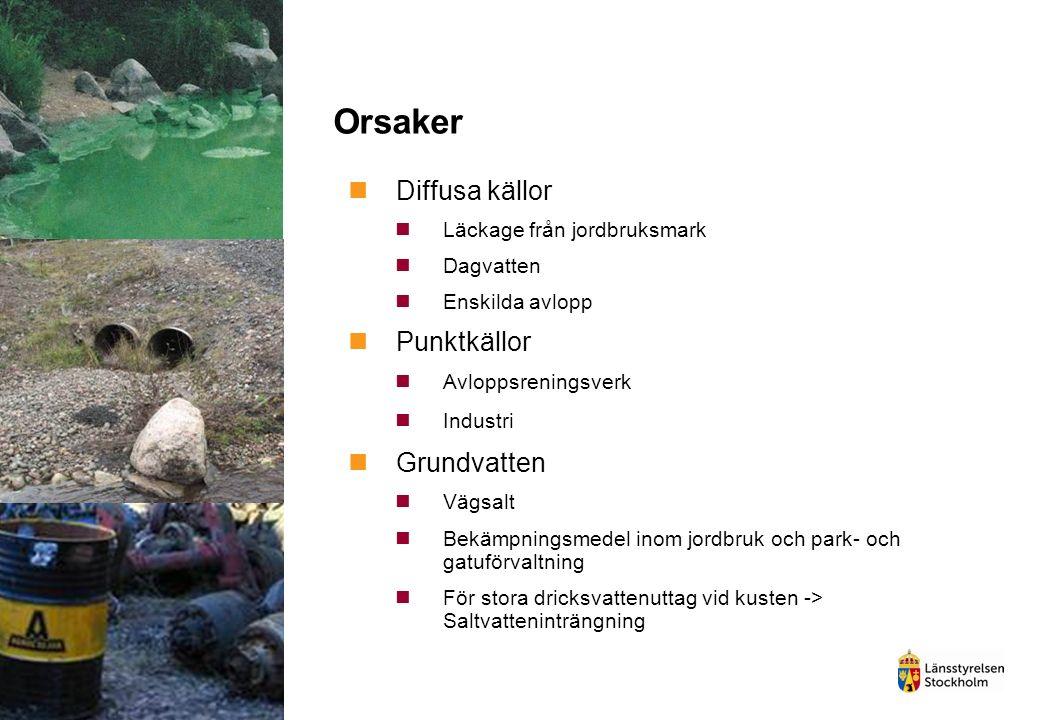 Orsaker Diffusa källor Läckage från jordbruksmark Dagvatten Enskilda avlopp Punktkällor Avloppsreningsverk Industri Grundvatten Vägsalt Bekämpningsmedel inom jordbruk och park- och gatuförvaltning För stora dricksvattenuttag vid kusten -> Saltvatteninträngning