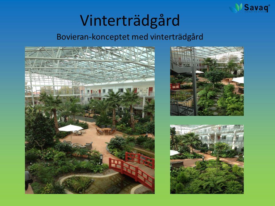 Vinterträdgård Bovieran-konceptet med vinterträdgård