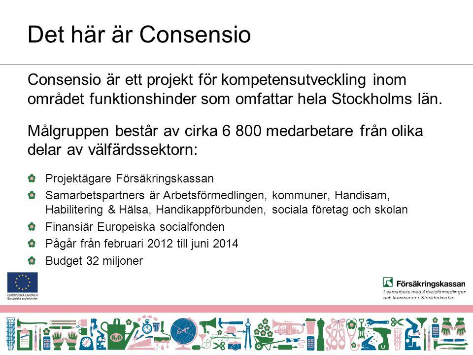 I samarbete med Arbetsförmedlingen och kommuner i Stockholms län www.projektconsensio.se Om Consensio Utbildningar Nyheter, reportage etc.