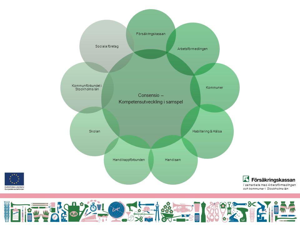 I samarbete med Arbetsförmedlingen och kommuner i Stockholms län Bakgrund Flera utredningar har visat att personer med funktionsnedsättning vill ha mer stöd och ett bättre samarbete mellan olika myndigheter.