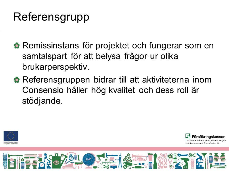 I samarbete med Arbetsförmedlingen och kommuner i Stockholms län Referensgrupp Remissinstans för projektet och fungerar som en samtalspart för att belysa frågor ur olika brukarperspektiv.