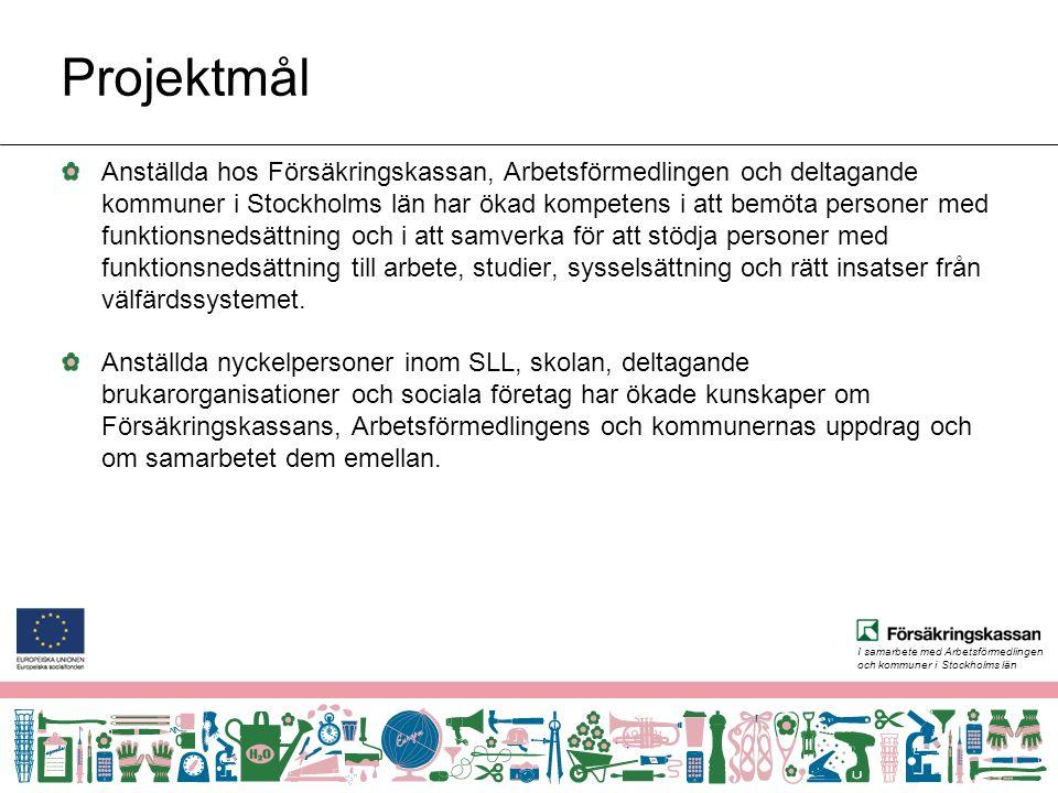 I samarbete med Arbetsförmedlingen och kommuner i Stockholms län Projektmål Anställda hos Försäkringskassan, Arbetsförmedlingen och deltagande kommuner i Stockholms län har ökad kompetens i att bemöta personer med funktionsnedsättning och i att samverka för att stödja personer med funktionsnedsättning till arbete, studier, sysselsättning och rätt insatser från välfärdssystemet.