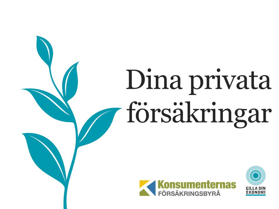 DIN PRIVATA FÖRSÄKRING Stiftelse som ger vägledning om försäkringar Stiftelse, startade 1979 Gratis opartisk vägledning Drygt 11 000 ärenden (2015) Huvudmän: Finansinspektionen Konsumentverket Svensk Försäkring