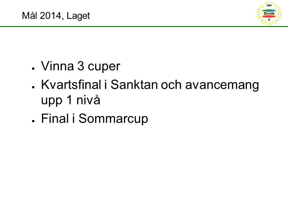 Mål 2014, Laget ● Vinna 3 cuper ● Kvartsfinal i Sanktan och avancemang upp 1 nivå ● Final i Sommarcup
