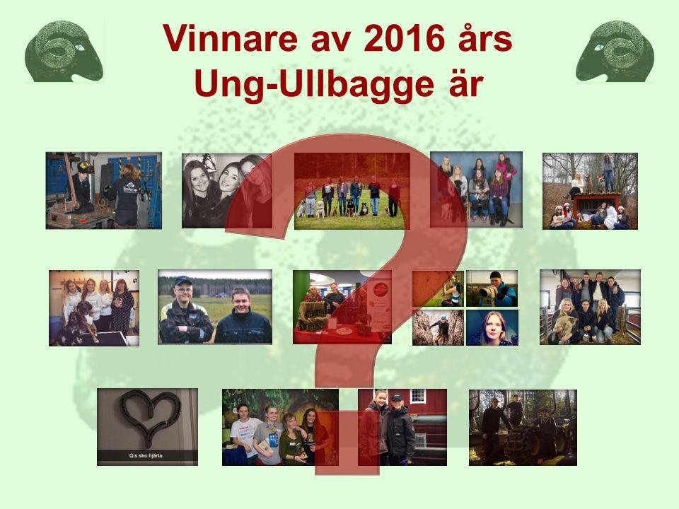 Vinnare av 2016 års Ung-Ullbagge är