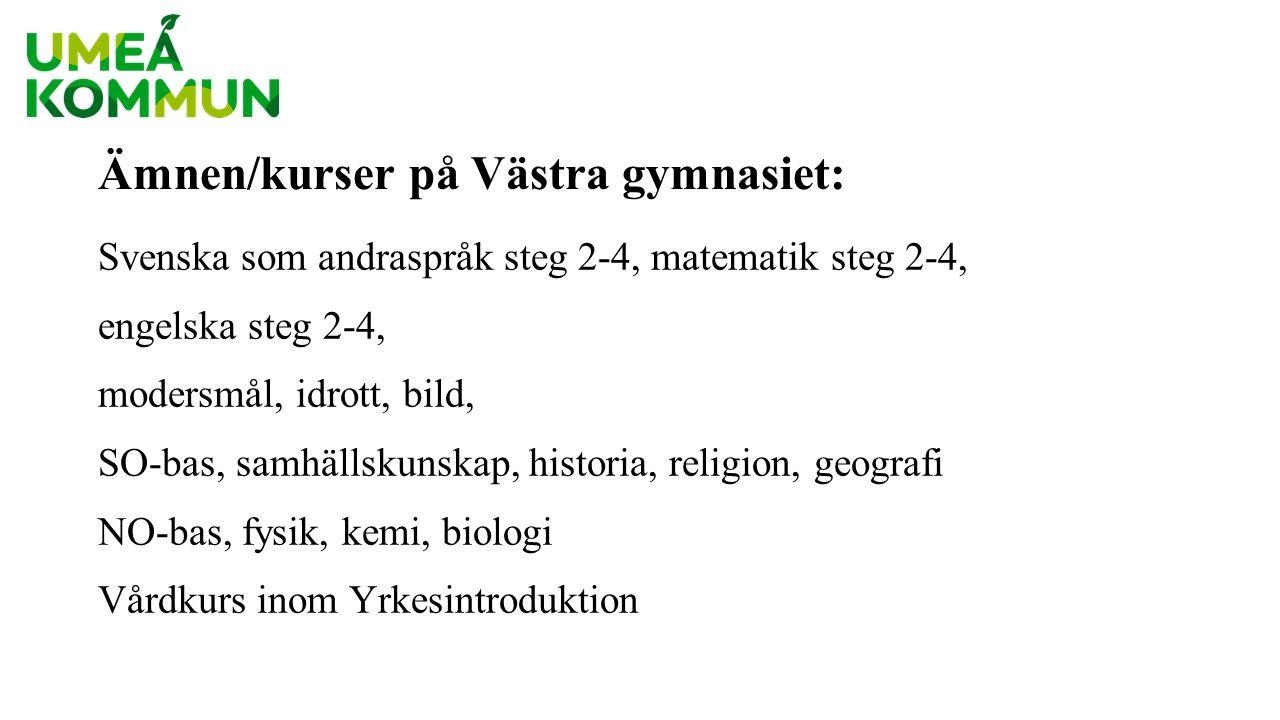 Nivåindelning NO/SO-ämnen Västra gymnasiet Betygskurser – 120 min/vecka, två terminer.