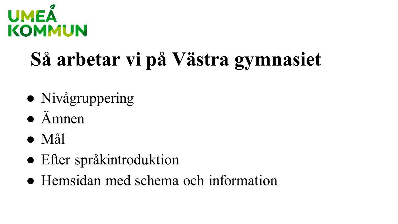 Nivågruppering i: ● svenska som andraspråk ● matematik ● engelska ● samhällsorienterande ämnen ● naturorienterande ämnen Baseras på överföring från lärare, tester och kartläggning.