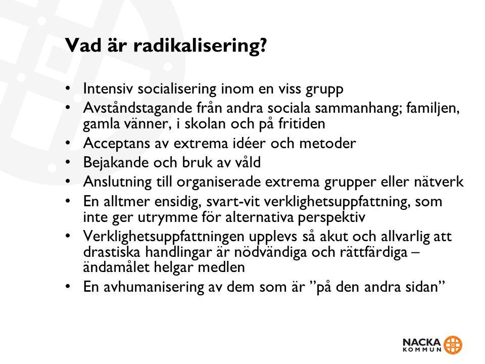 Vad är radikalisering.