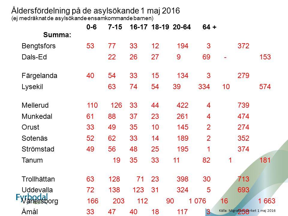 Åldersfördelning på de asylsökande 1 maj 2016 (ej medräknat de asylsökande ensamkommande barnen) 0-67-1516-1718-1920-64 64 + Summa: Bengtsfors53773312