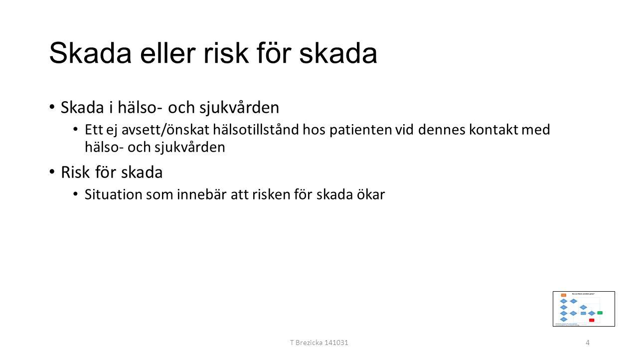 Skada eller risk för skada Skada i hälso- och sjukvården Ett ej avsett/önskat hälsotillstånd hos patienten vid dennes kontakt med hälso- och sjukvården Risk för skada Situation som innebär att risken för skada ökar T Brezicka 1410314