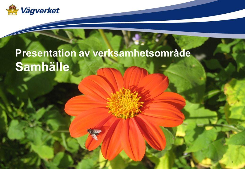 Arbetsmaterial 2008-04-21 3 Presentation av verksamhetsområde Samhälle