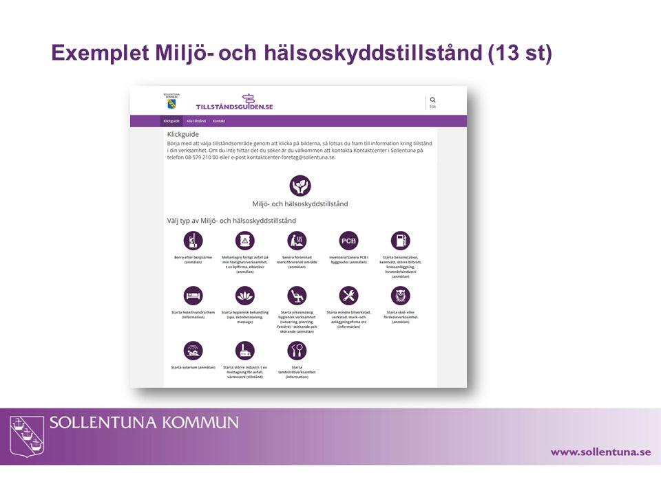 Exemplet Miljö- och hälsoskyddstillstånd (13 st)