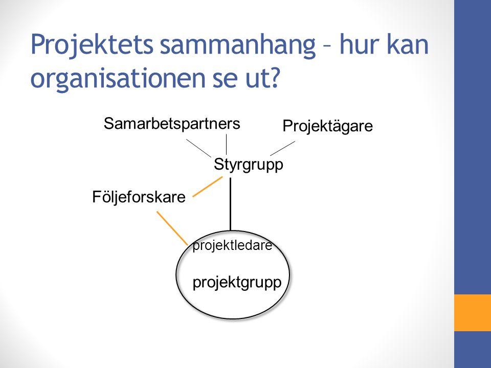 Projektets sammanhang – hur kan organisationen se ut.