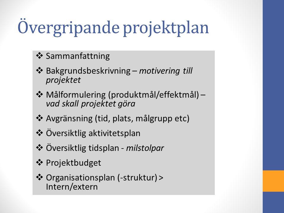  Sammanfattning  Bakgrundsbeskrivning – motivering till projektet  Målformulering (produktmål/effektmål) – vad skall projektet göra  Avgränsning (tid, plats, målgrupp etc)  Översiktlig aktivitetsplan  Översiktlig tidsplan - milstolpar  Projektbudget  Organisationsplan (-struktur) > Intern/extern Övergripande projektplan
