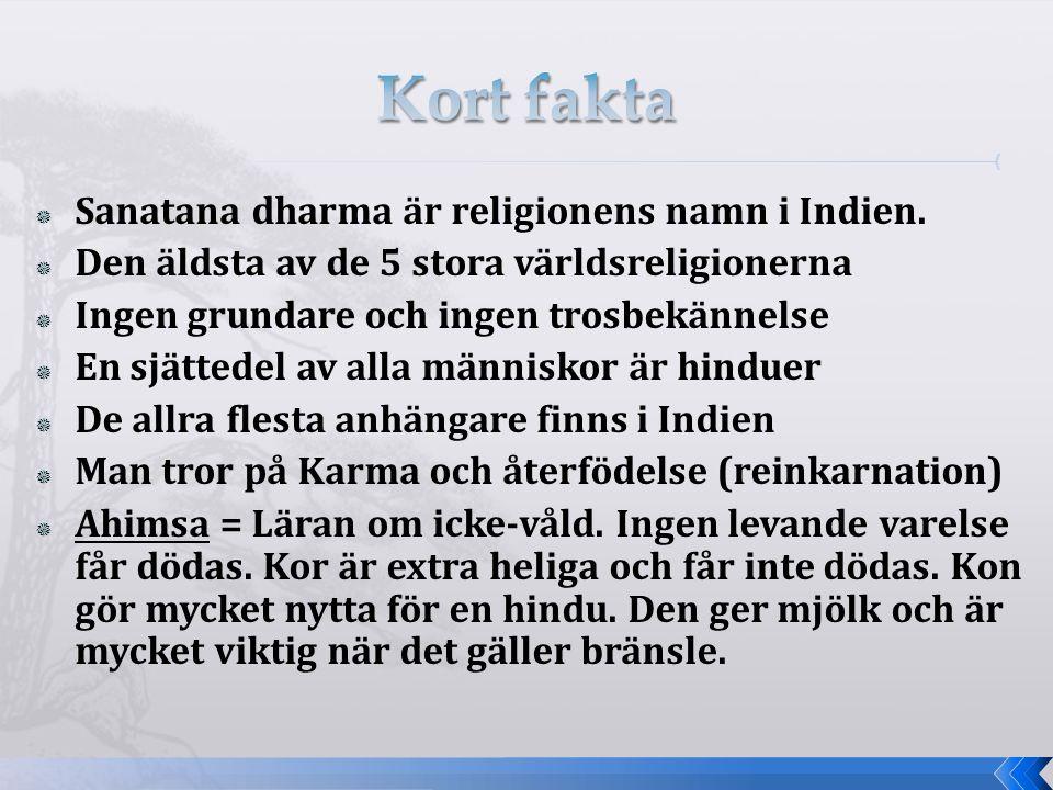  Sanatana dharma är religionens namn i Indien.  Den äldsta av de 5 stora världsreligionerna  Ingen grundare och ingen trosbekännelse  En sjättedel