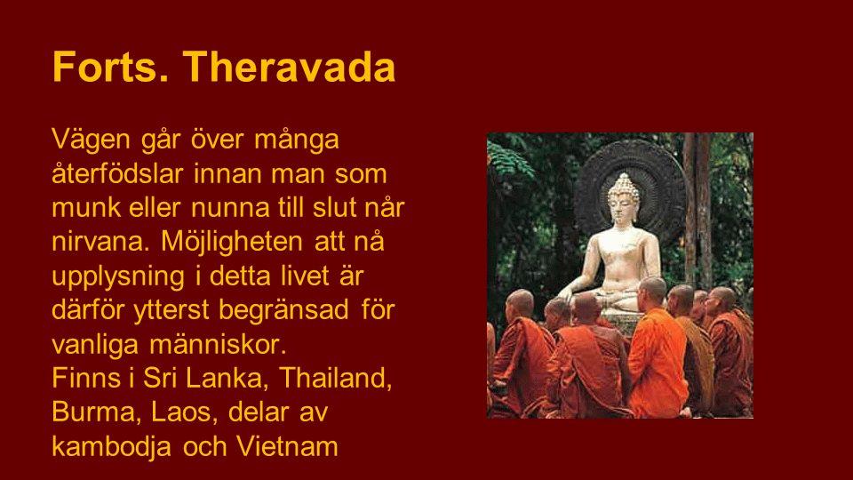 Forts. Theravada Vägen går över många återfödslar innan man som munk eller nunna till slut når nirvana. Möjligheten att nå upplysning i detta livet är