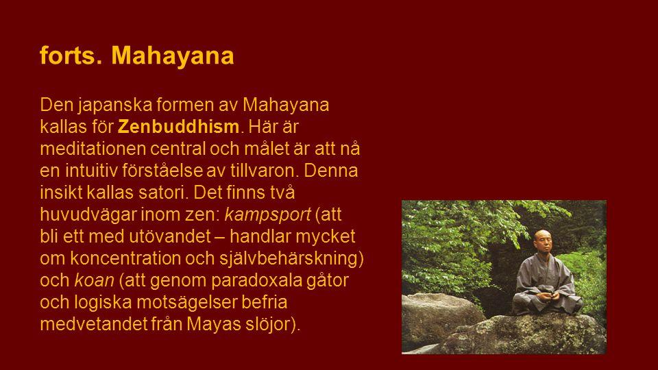 forts. Mahayana Den japanska formen av Mahayana kallas för Zenbuddhism. Här är meditationen central och målet är att nå en intuitiv förståelse av till