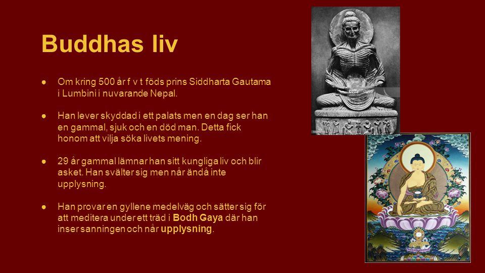 ●Om kring 500 år f v t föds prins Siddharta Gautama i Lumbini i nuvarande Nepal. ●Han lever skyddad i ett palats men en dag ser han en gammal, sjuk oc