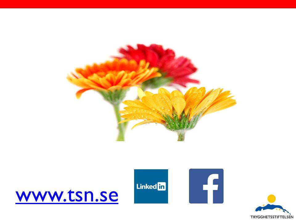 www.tsn.se