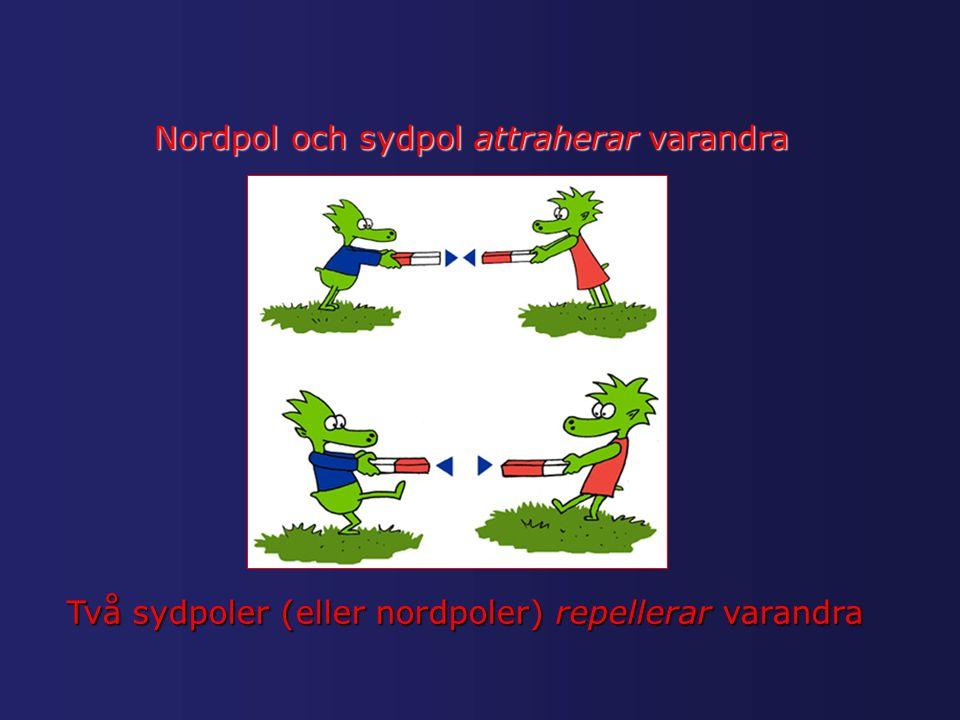 Nordpol och sydpol attraherar varandra Två sydpoler (eller nordpoler) repellerar varandra