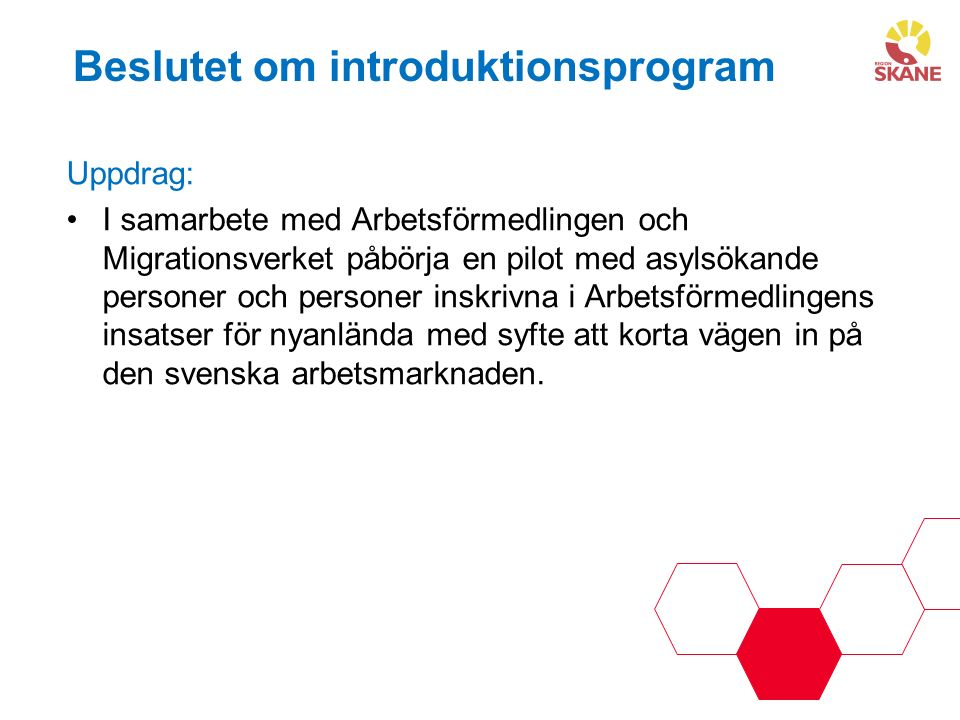 Beslutet om introduktionsprogram Uppdrag: I samarbete med Arbetsförmedlingen och Migrationsverket påbörja en pilot med asylsökande personer och personer inskrivna i Arbetsförmedlingens insatser för nyanlända med syfte att korta vägen in på den svenska arbetsmarknaden.