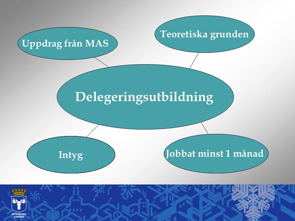 Delegeringsutbildning Jobbat minst 1 månad Intyg Teoretiska grunden Intyg Uppdrag från MAS Intyg