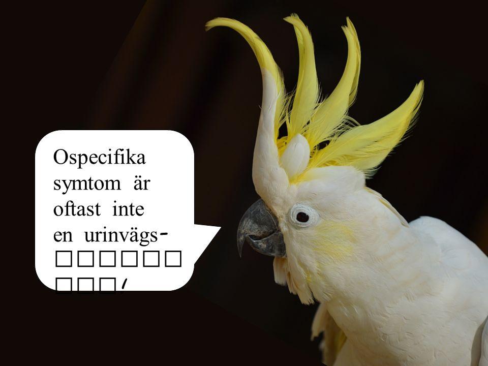 Ospecifika symtom är oftast inte en urinvägs - infekt ion !
