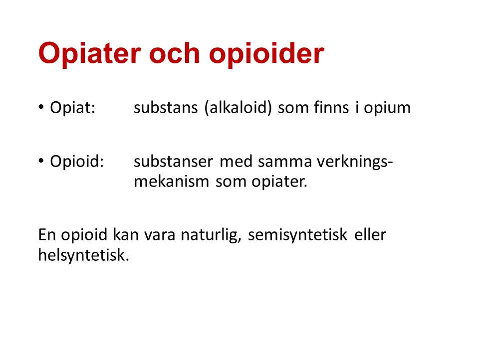 Opiater och opioider Opiat: substans (alkaloid) som finns i opium Opioid: substanser med samma verknings- mekanism som opiater.