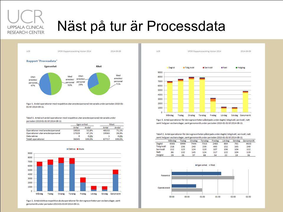 Näst på tur är Processdata