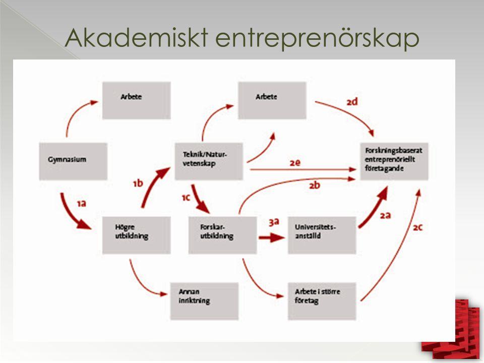 Akademiskt entreprenörskap