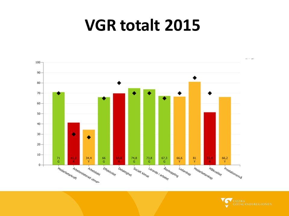 VGR totalt 2013
