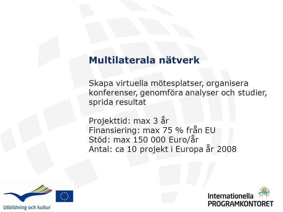 Multilaterala nätverk Skapa virtuella mötesplatser, organisera konferenser, genomföra analyser och studier, sprida resultat Projekttid: max 3 år Finansiering: max 75 % från EU Stöd: max 150 000 Euro/år Antal: ca 10 projekt i Europa år 2008