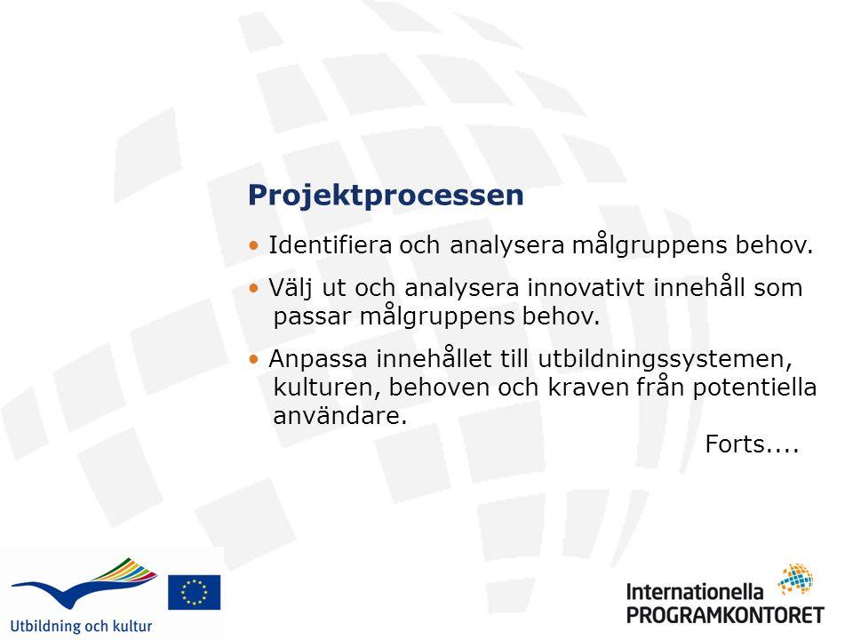 Projektprocessen Identifiera och analysera målgruppens behov.