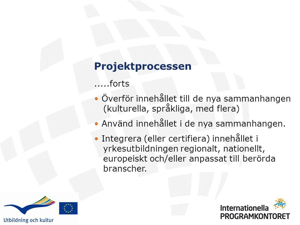 Projektprocessen.....forts Överför innehållet till de nya sammanhangen (kulturella, språkliga, med flera) Använd innehållet i de nya sammanhangen.