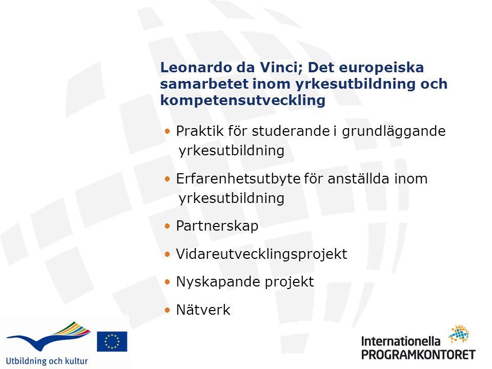 Leonardo da Vinci; Det europeiska samarbetet inom yrkesutbildning och kompetensutveckling Praktik för studerande i grundläggande yrkesutbildning Erfarenhetsutbyte för anställda inom yrkesutbildning Partnerskap Vidareutvecklingsprojekt Nyskapande projekt Nätverk