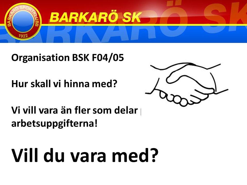 Organisation BSK F04/05 Hur skall vi hinna med.