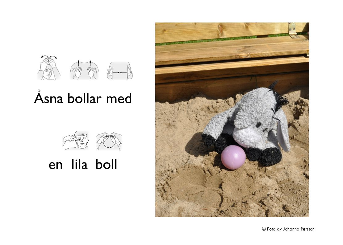 Åsna bollar med en lila boll © Foto av Johanna Persson