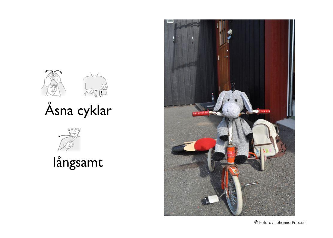 Åsna cyklar långsamt © Foto av Johanna Persson