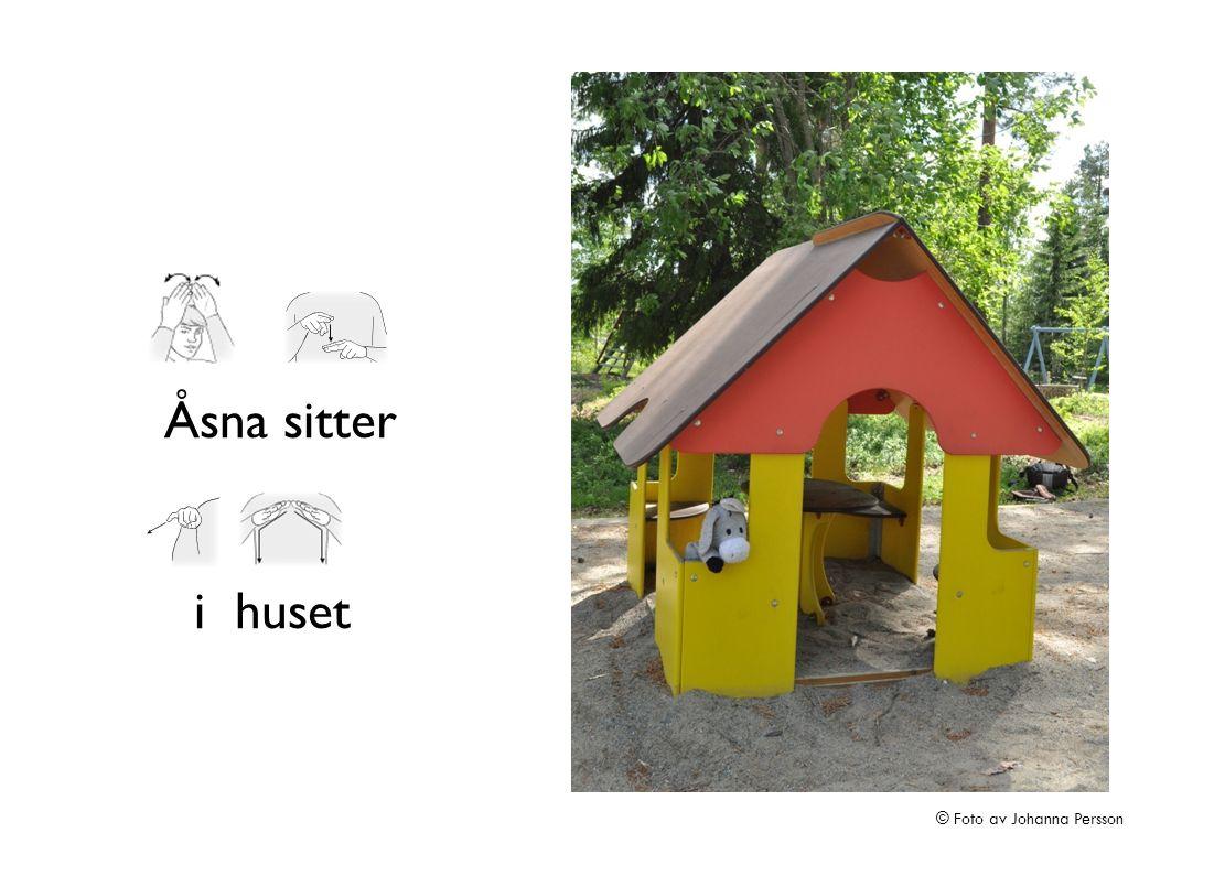 Åsna sitter i huset © Foto av Johanna Persson