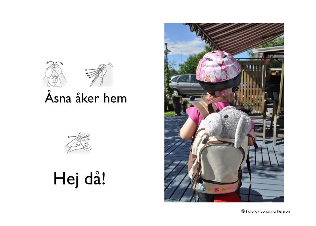 Åsna åker hem Hej då! © Foto av Johanna Persson