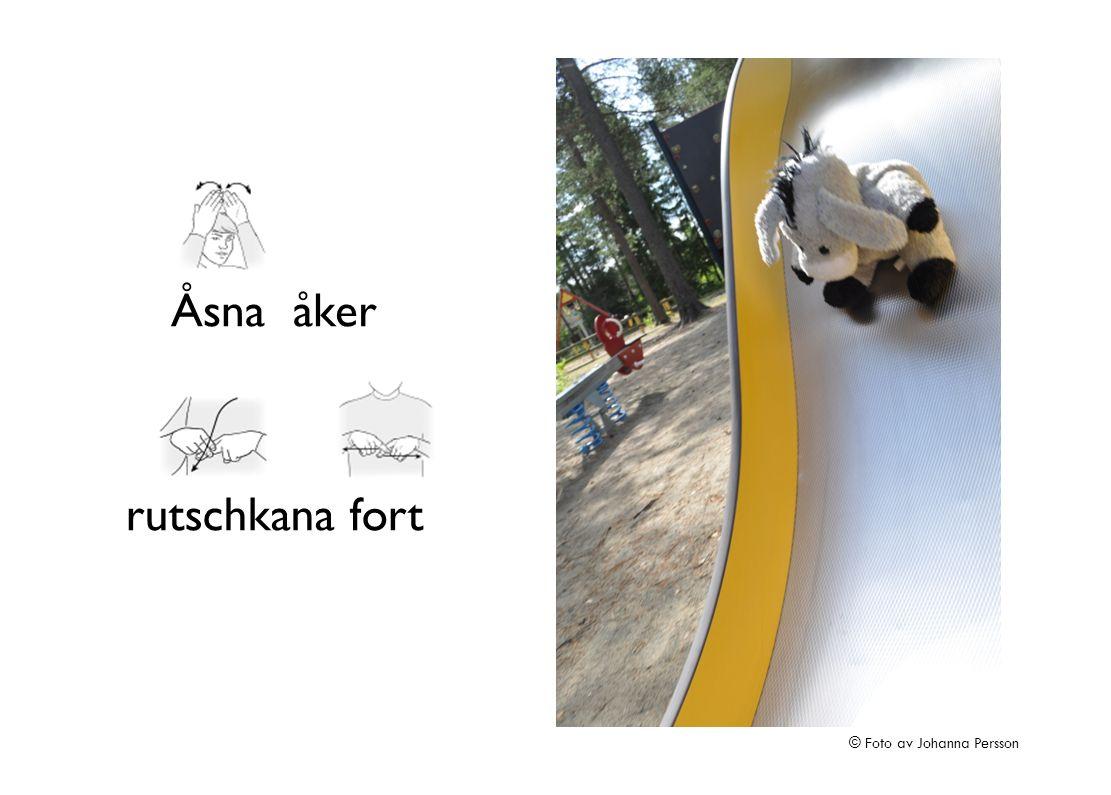 Åsna åker rutschkana fort © Foto av Johanna Persson